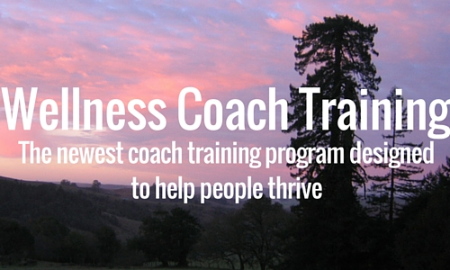 Wellness Coach Training Has Launched John Andrew