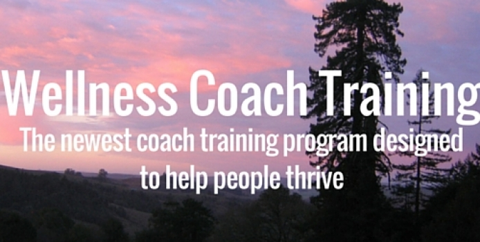 Wellness Coach Training has launched!